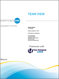 Everything DiSC Team View Report
